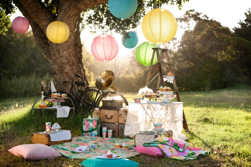 picnic-77618